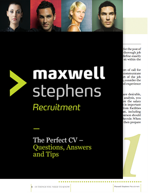 The Perfect CV e-book cover